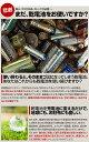 【送料無料/ケース付】 充電池 2100mAh 単3 8本 セット エネボルト 電池