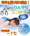 【数量限定】特価 体感温度-7°を体感して下さい ひんやり冷却ジェルパッド 枕タイプM 今が夏だなんて信じられないほど清涼感抜群です!♪【あす楽対応】[G2]【ne】
