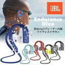 JBL MP3プレーヤー内蔵 防水ワイアレスイヤホン ENDURANCE DIVE (Bluetooth対応)【国内正規輸入代理店商品】【送料無料】