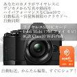 【あす楽】アイファイジャパン/Eyefiカード/eyefi mobi(アイファイ モビ) 8GB/ワイヤレスメモリーカード/EFJ-MC-08/05P23Apr16