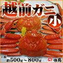 【11/6解禁!】越前ガニ(小)福井県産越前がに・蟹 約50...