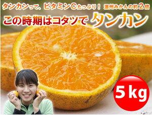 スイートオレンジ ポンカン