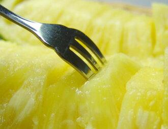 在石垣島成熟的鳳梨園 3 公斤 (2 到 4 個球) 厚美味的鳳梨提高成熟直到最後一分鐘。 松樹街小吃松多挑夏威夷物種松。