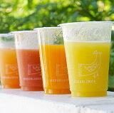 【・お医者さんの奥さんが飲むイルドゥリの野菜ジュース30本セット】朝の空腹時に毎日1本飲むと「理想の体重」「理想の体型」を手に入れることができます。みどりむし10億ジュース(石垣島