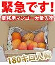 7月27日午後零時30個追加しました!箱いっぱい3キロ以上♪業務用(訳あり)マンゴー!お味は当...