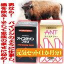 <ANT&オイスタゲン・プラス>「蟻と牡蠣」実力の元気パワーのスターターセット