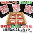 【500円OFFクーポン配布中】【送料無料】ミニトマト3種類詰め合わせセット 【ミニトマ