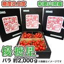 【送料無料】【ミニトマト】 優糖星(ゆうとうせい) バラ 約2,000g フルーツ感覚