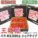 【送料無料】【ミニトマト】王糖姫(おとひめ) バラ約3,500gシェアタイプ