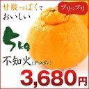 不知火 デコポン!不知火(デコポン) 5kg 熊本県産 【不...