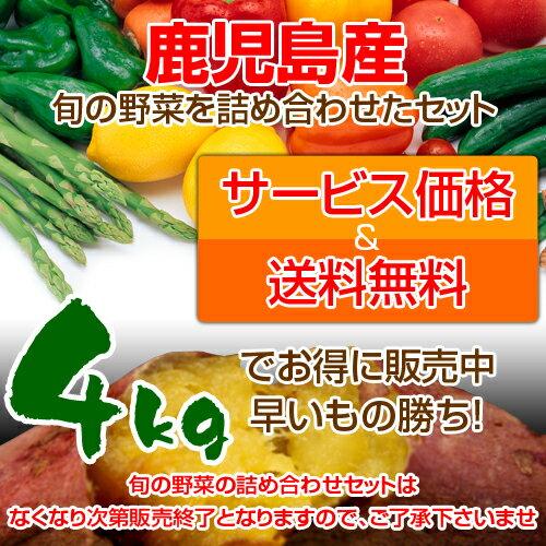鹿児島産季節の野菜詰め合わせセット!