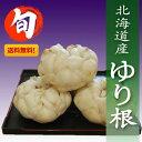 【送料無料】北海道産「ゆり根」2Lサイズ1kg【高級食材】