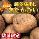 【数量限定】北海道産じゃがいも「越冬きたかむい」Mサイズ10kg【送料無料】