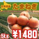 【送料無料】北海道産美味し-い玉ねぎ5kg【オススメ】