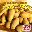 【送料無料】北海道厚沢部町産「新じゃがメークイン」(2L〜3Lサイズ)10kg