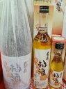【贅沢仕込の梅酒】天狗舞 梅酒 500ml