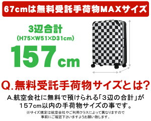 �����ĥ�������TripFlash/B1116T��64cm/71cmL����������5���Ĺ��������緿�ե졼�ॿ����TSA��å�����ǵ�������㥹���������������ʡ��ե�åȡ�����̵����1ǯ�ݾ��աۡ�Ʊ���оݡ�