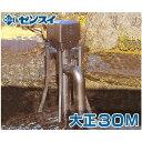 ゼンスイ ウォータークリーナー 『大正30M』 (100V30W) [池用 濾過器 ろ過器 ろ過装置][r20]
