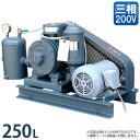 三黄 ロータリーブロアー RB-3/4UMT (三相200V400Wモーター付き/吐出量250L) [浄化槽エアーポンプ][r21][s4-999]【返品不可】