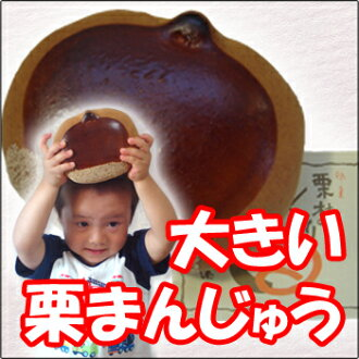 "Kuribayashi boring ""okuri""! Shiny chestnut brown and mustard fruit flavours of fine old wagashi Japanese sweets with chestnuts souvenir, unusual gift, surprise, celebration"