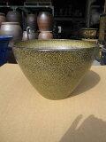 【信楽植木鉢】金ソバ植木鉢