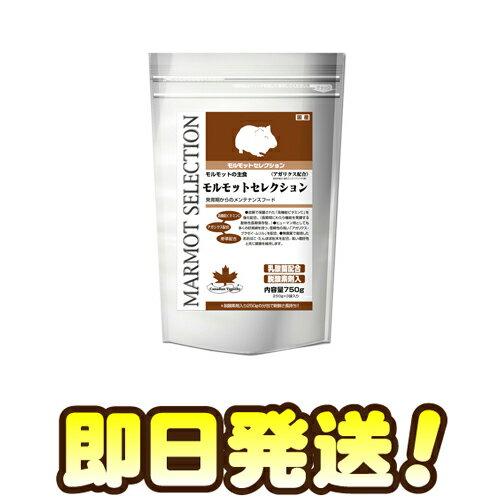【即日発送】 モルモットセレクション 750g
