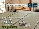 純国産 い草 上敷き カーペット 糸引織 『梅花』 六一間4.5畳(約277×277cm)<イケヒコ>