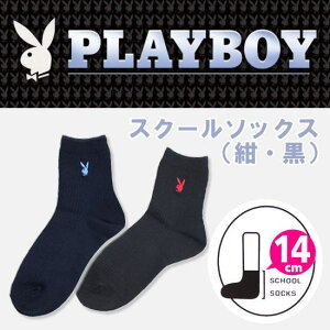 プレイボーイ(PLAY BOY)
