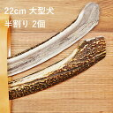 【 22cm 大型犬用 】【半割り】【2個セット】エゾ鹿の角...