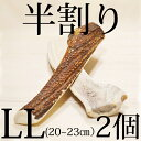 【半割り!】エゾ鹿の角【2個セット】犬 おやつ 無添加 ガム 国産【20cm?23cm】/ペット・ペ