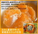 薬品処理をしない国産みかんの缶詰【RCP】