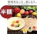 【ポイント5倍】野菜ソルベ 8個入り 野菜で作ったシャーベットは乳製品不使用、乳化剤・保存料無添加です。野菜スイーツ 野菜デザート【RCP】05P03Dec16