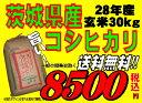28年産  茨城県産コシヒカリ玄米30kg送料無料 無料精米 【smtb-TD】【saitama】【