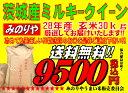 ミルキークィーン 茨城県産 28年産 玄米 30Kg 精米無料 送料無料 【smtb-TD】【sai