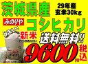 新米29年産  茨城県産コシヒカリ玄米30kg送料無料 無料精米 【smtb-TD】【saitama