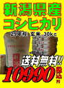 29年産新潟県産 コシヒカリ 玄米 30kg お米 【smt...