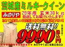 ミルキークィーン 茨城県産 29年産 玄米 30Kg 精米無料 送料無料 【smtb-TD】【sai