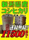 29年産新潟県産 コシヒカリ 玄米 30kg お米   02P05Nov16