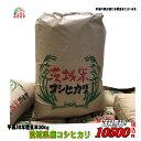 30年産  茨城県産コシヒカリ玄米30kg送料無料 無料精米...