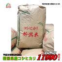 30年産新潟県産 コシヒカリ 玄米 30kg お米 【smtb-TD】【sait