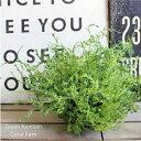 Green fountain * コーラルファーン 41731 造花 フェイクグリーン CT触媒