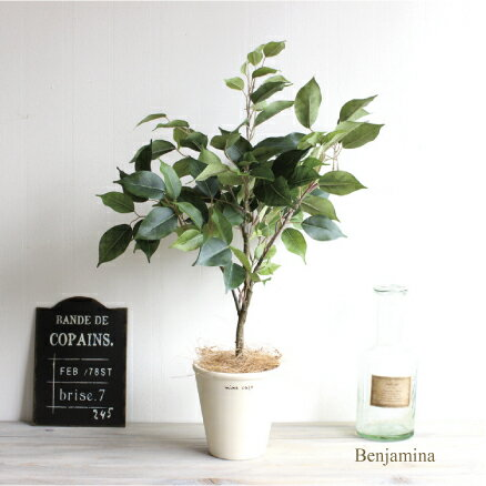 テーブルベンジャミン H60 観葉植物 造花 インテリア CT触媒 重要:北海道、沖縄 送料別途 +1500円