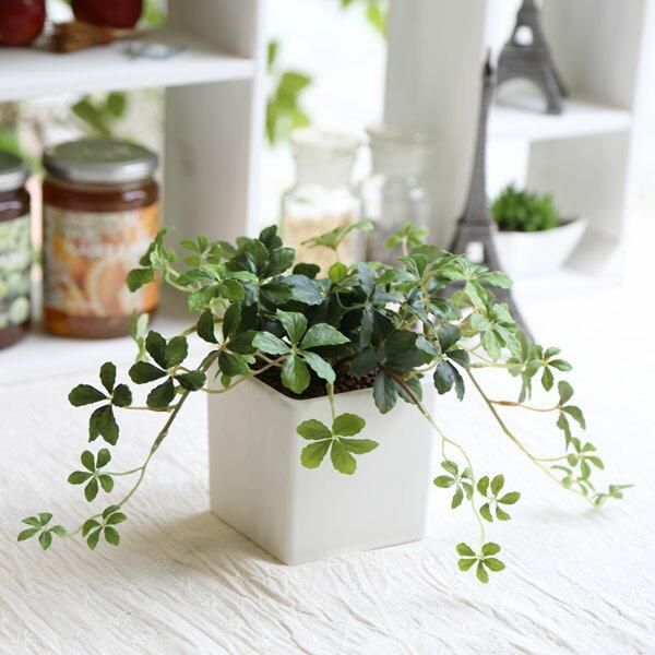 観葉植物 L.シサスアイビー・シュガーバイン 造花 インテリア フェイクグリーン 消臭 光…...:mintcafe:10000232