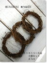 minimini wreath 【ドライフラワー リース台 7cm 3個セット】