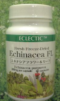 Herbal supplement echinacea (flower and leaf) (reviews campaign) eclectic company