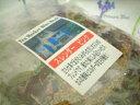 ショッピングヴァーベナ 【ネコポスで送料無料】ブレンドハーブティースレンダーピンク(50袋入)