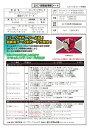 ◆予約◆送料無料 2017Jリーグチームエディション メモラビリア 鹿島アントラーズ[ボックス](00-63240)