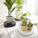 楽天MIRAGE-STYLEtidy Plantable プランタブル【3色】【MIRAGE-STYLE】植木鉢/観葉植物/移動/便利/スタイリッシュ/持運び/ OT-668-100-7(WH) -4(BR) -0(BK) AW