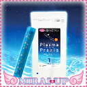 オーナー・ペット用 水素プラズマウォーター生成スティック Plasma Praxis プラズマ プラクシス