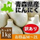 人気の青森県最上級ブランドにんにく!厳しい冬の寒さの中で育った大粒で糖度が高いニンニク国産にんにくの中でも美味しいにんにくと評判です。